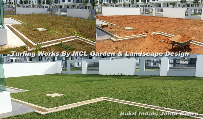 Grasses For Sale/Turf | Welcome To MCL Garden U0026 Landscape Design JB Malaysia