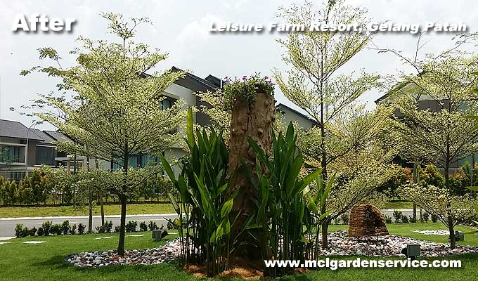 Johor Bahru Landscape Company
