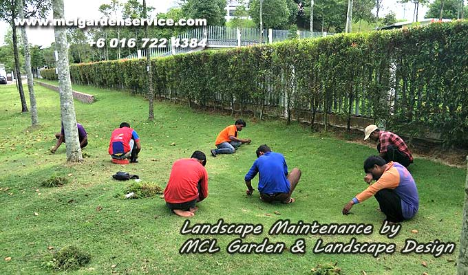 Landscape-Maintenance-Service-MCL-Garden-Johor-Bahru-10