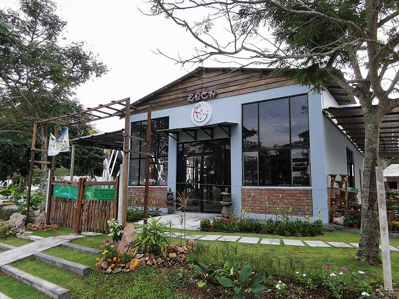 MCL Garden & Landscape Design - Nursery Bukit Indah