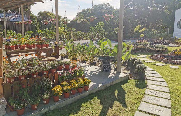 MCL Garden & Landscape Design - Johor Bukit Indah Garden Nursery